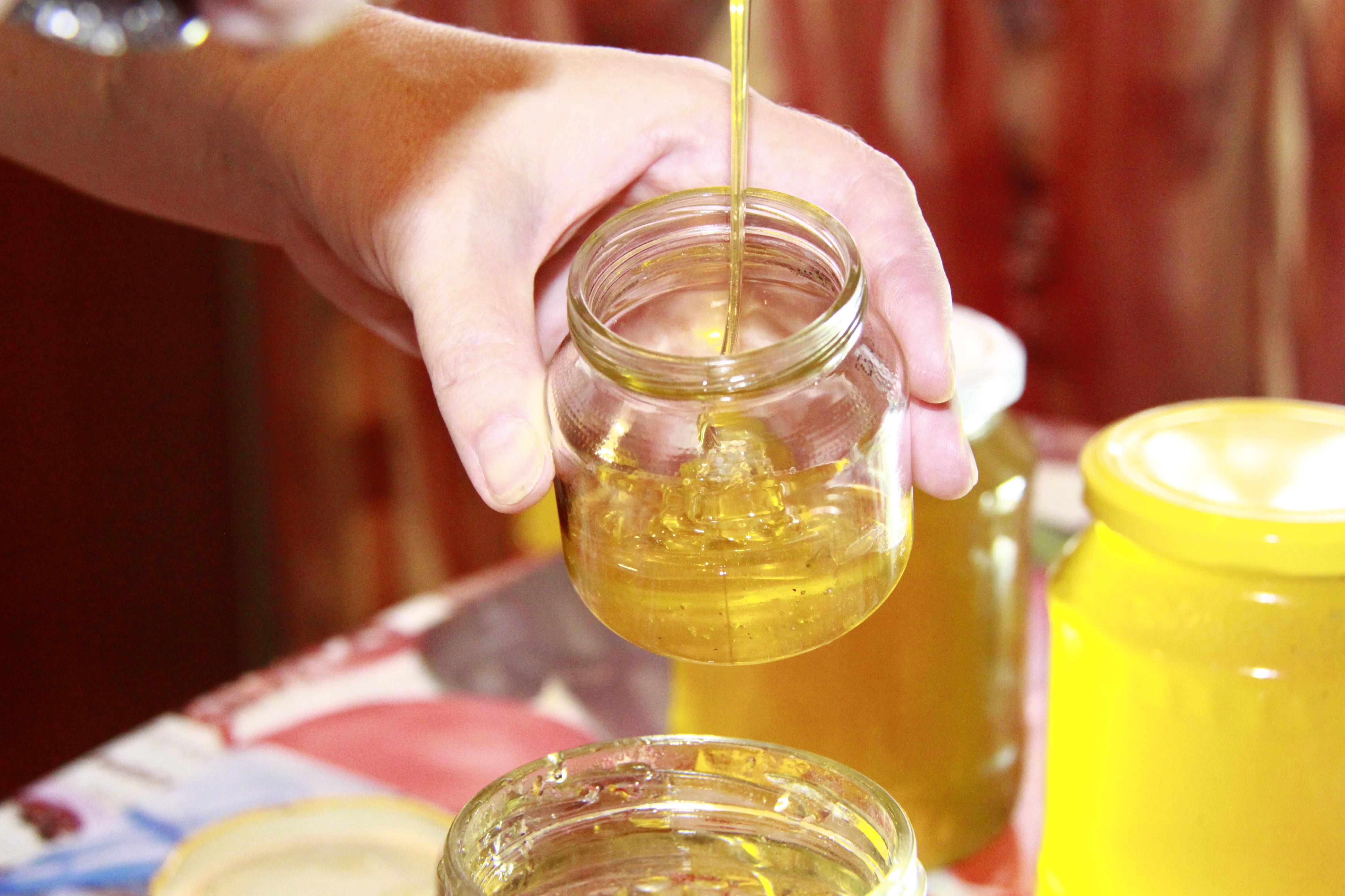 Как проверить качество меда: 10 простых способов 34