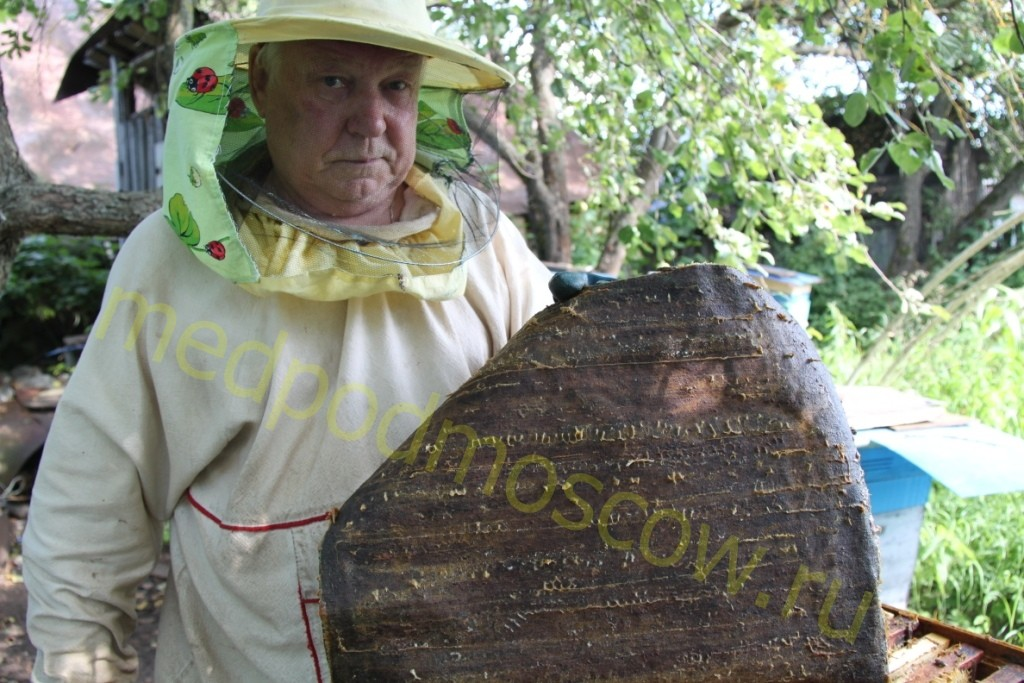 Пчеловод Анатолий и прополисный холстик